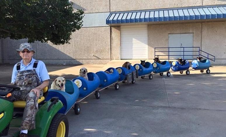 anciano construye perro tren