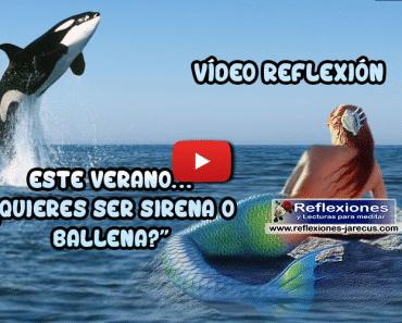 Este verano ¿ Quieres ser sirena o ballena ? - Reflexiones de mujer